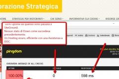 screenshot-siteground-ping